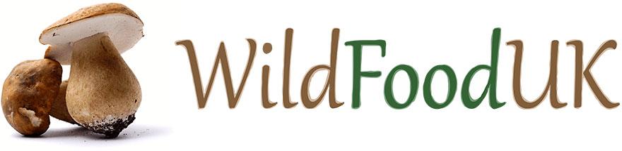 Wild Food UK