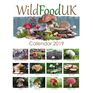 Wildfood Calendar