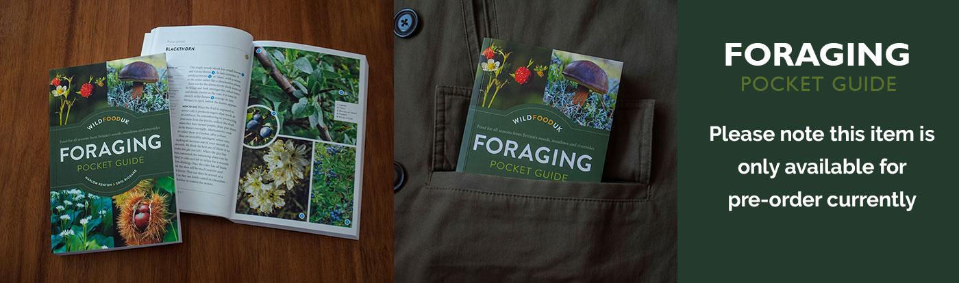 Foraging Pocket Guide Presale only